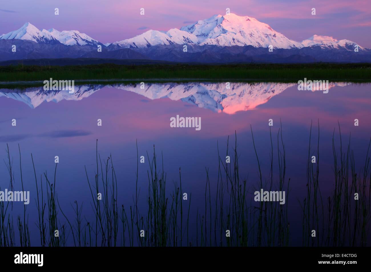 Mt. McKinley, also known as Denali, Denali National Park, Alaska.  - Stock Image