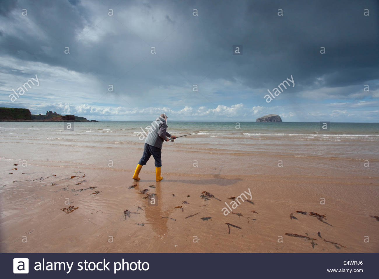 Sea angling from the beach at Seacliff with a view beyond to the Bass Rock, near North Berwick, East Lothian, Scotland. - Stock Image
