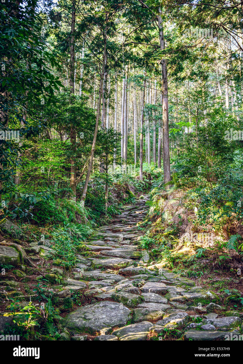 Kumano, Japan at Matsumoto Pass. The pass is part of the Kumano Kodo, a series of ancient pilgrimage routes. - Stock Image
