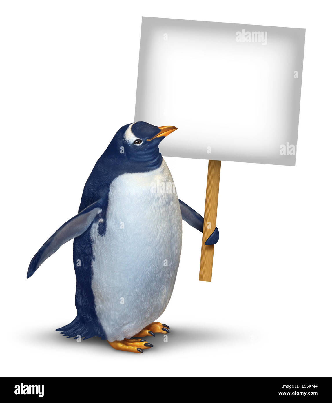 Penguin holding a blank card sign as a cute polar bird with a smiling happy expression supporting and communicating - Stock Image