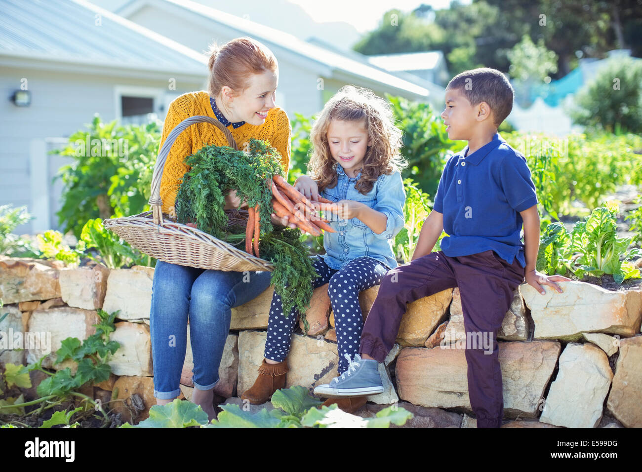 Teacher and students in vegetable garden - Stock Image