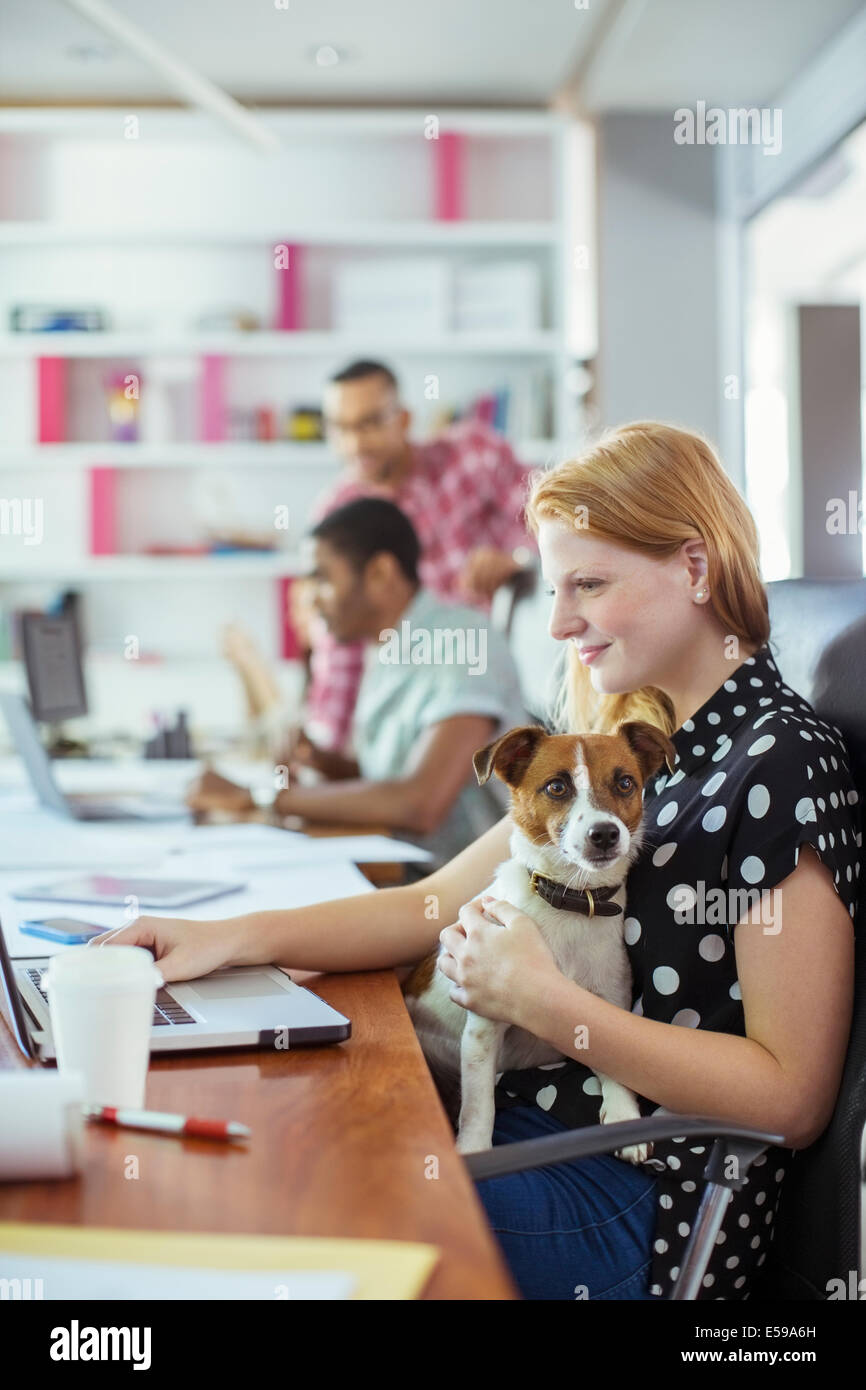 Dog sitting on woman's lap in office - Stock Image