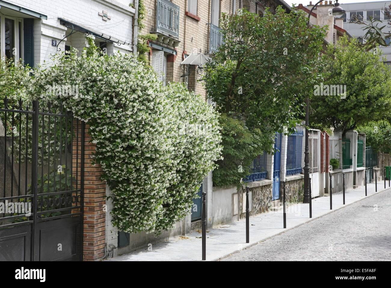 France Ile De France Paris E Arrondissement Villa Daviel Stock - Maison individuelle ile de france