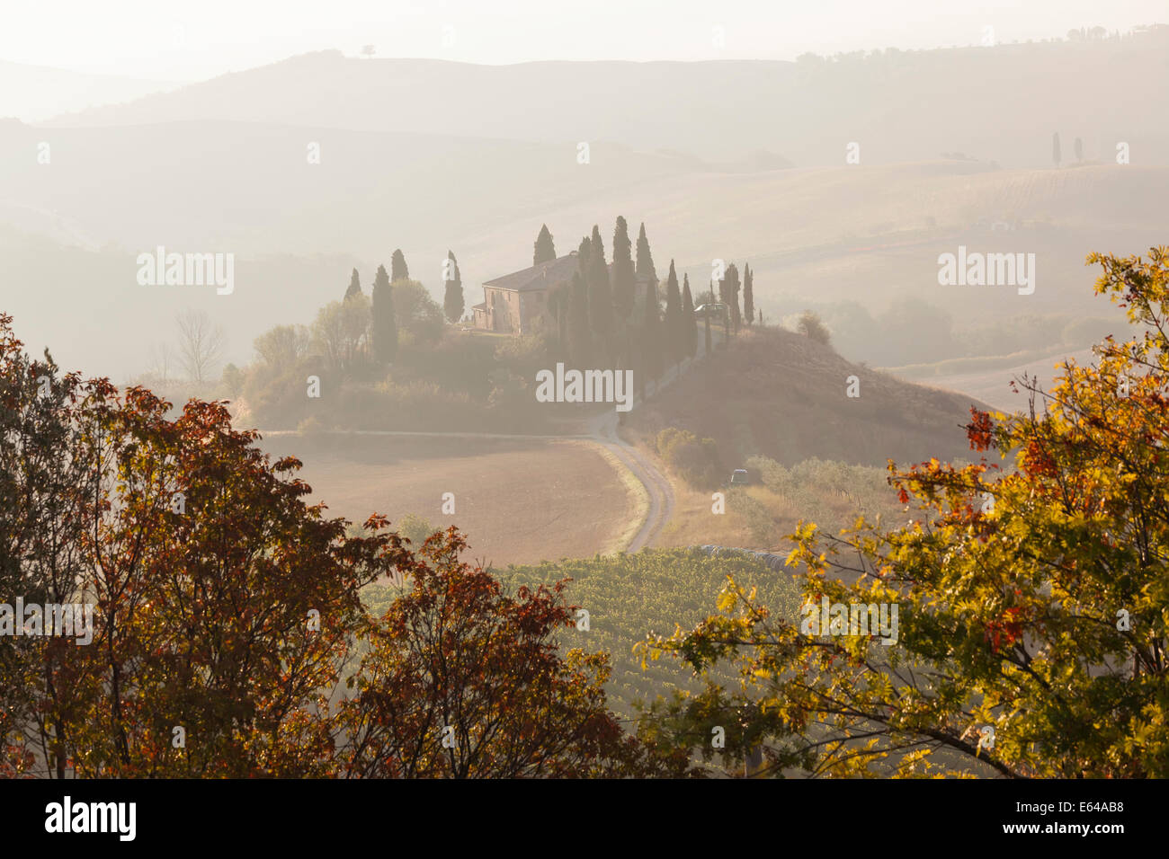 Early morning, Val d'Orcia , Tuscany, Italy - Stock Image