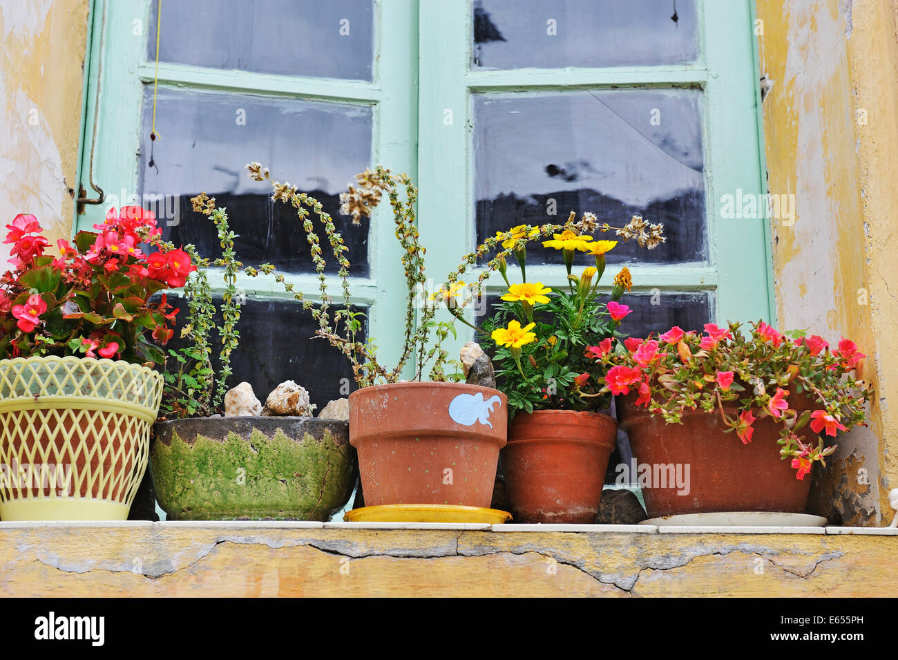 Wonderful Flowers In Plant Pots On A Windowsill In A French Village, France, Europe