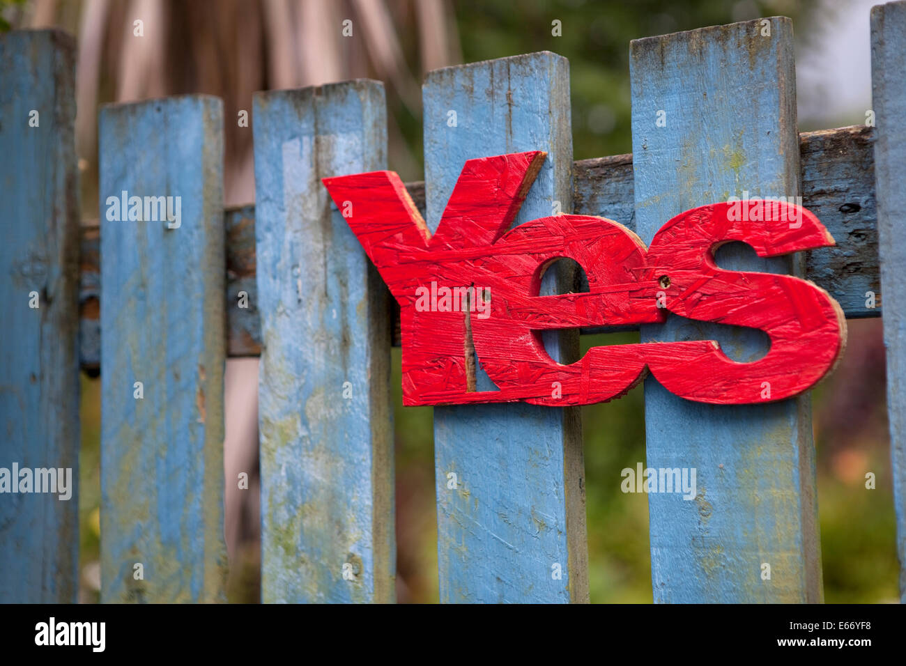 Red 'yes' nailed to a blue wooden gate in Scotland in support of Scottish Independence in 2014. - Stock Image