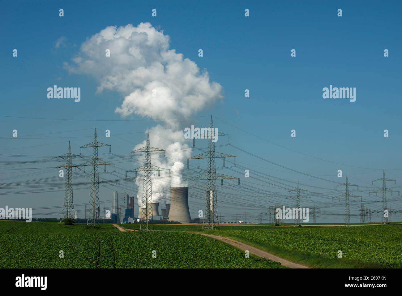Lignite-fired power station, with arable land at the front, power lines cutting through the landscape, Bergheim - Stock Image