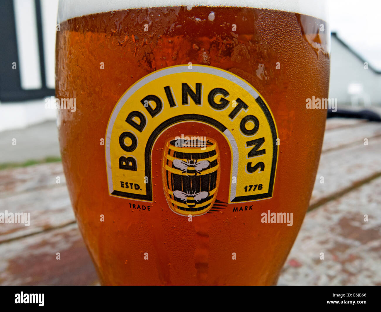 with,a,head,withahead,beer,Boddington,regional,ale,brewed,in,Mossside,pint,glass,boddies,hoppy,widget,draught-style,draught,style,cream,brewing,co,company,Strangeways,whitbread,Anheuser–Busch,InBev,outside,on,a,bench,table,wood,wooden,cask,conditioned,Pub,barrel,regional,national,Madchester,Gotonysmith,the,of,creamOfManchester,bee,bees,logo,city,product,NW,England,UK,GB,Great,britain,Anheuser,Busch,Hydes,Brewery,in,Moss,Side,Kestrel,kegging,facility,prison,HMP,demolished,blandly,foamy,nitrokeg,travesty,of,the,original,version,Mancester,Buy Pictures of,Buy Images Of