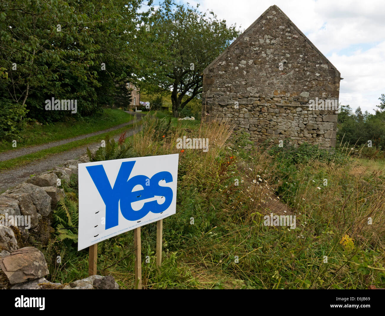 Alex,Salmond,Braveheart,vote,voter,voters,voting,Borders,of,Scotland,alastair,darling,2014,sep,september,strength,of,feeling,SNP,National,Party,in,my,field,town,village,support,supporter,supporting,homemade,hand,made,handmade,GB,Great,Britain,empire,break,up,breakup,split,splits,gotonysmith,City,of,Glasgow City,of,Edinburgh Fife North,Lanarkshire South,Lanarkshire Aberdeenshire Highland City,of,Aberdeen West,Lothian Renfrewshire Falkirk Dumfries,and,Galloway Perth,and,Kinross City,of,Dundee North,Ayrshire East,Ayrshire Scottish,Borders South,Ayrshire Angus East,Dunbartonshire East,Lothian West,Dunbartonshire Stirling East,Renfrewshire Argyll,and,Bute Moray Midlothian Inverclyde Clackmannanshire Na,h-Eileanan,Siar,(Western,Isles) Shetland,Islands Orkney,Islands,CNES,people,of,referendum,decide,decides,yessign