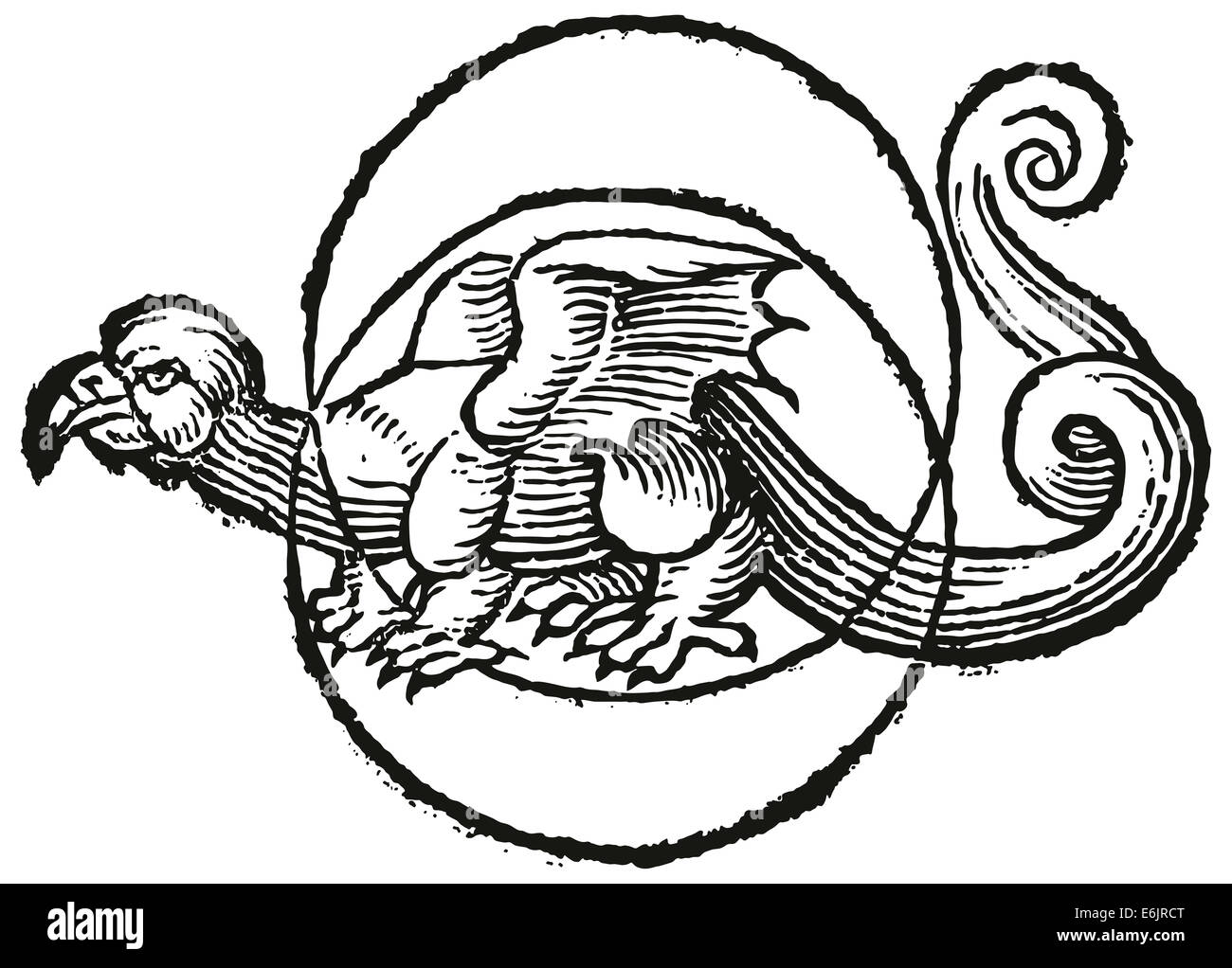 Moon Dragon in the center of two circles. Woodcut illustration. - Stock Image