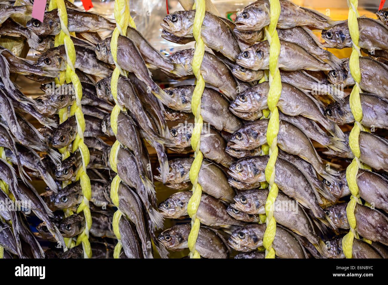 dried fish at gwangjang market in seoul, south korea - Stock Image