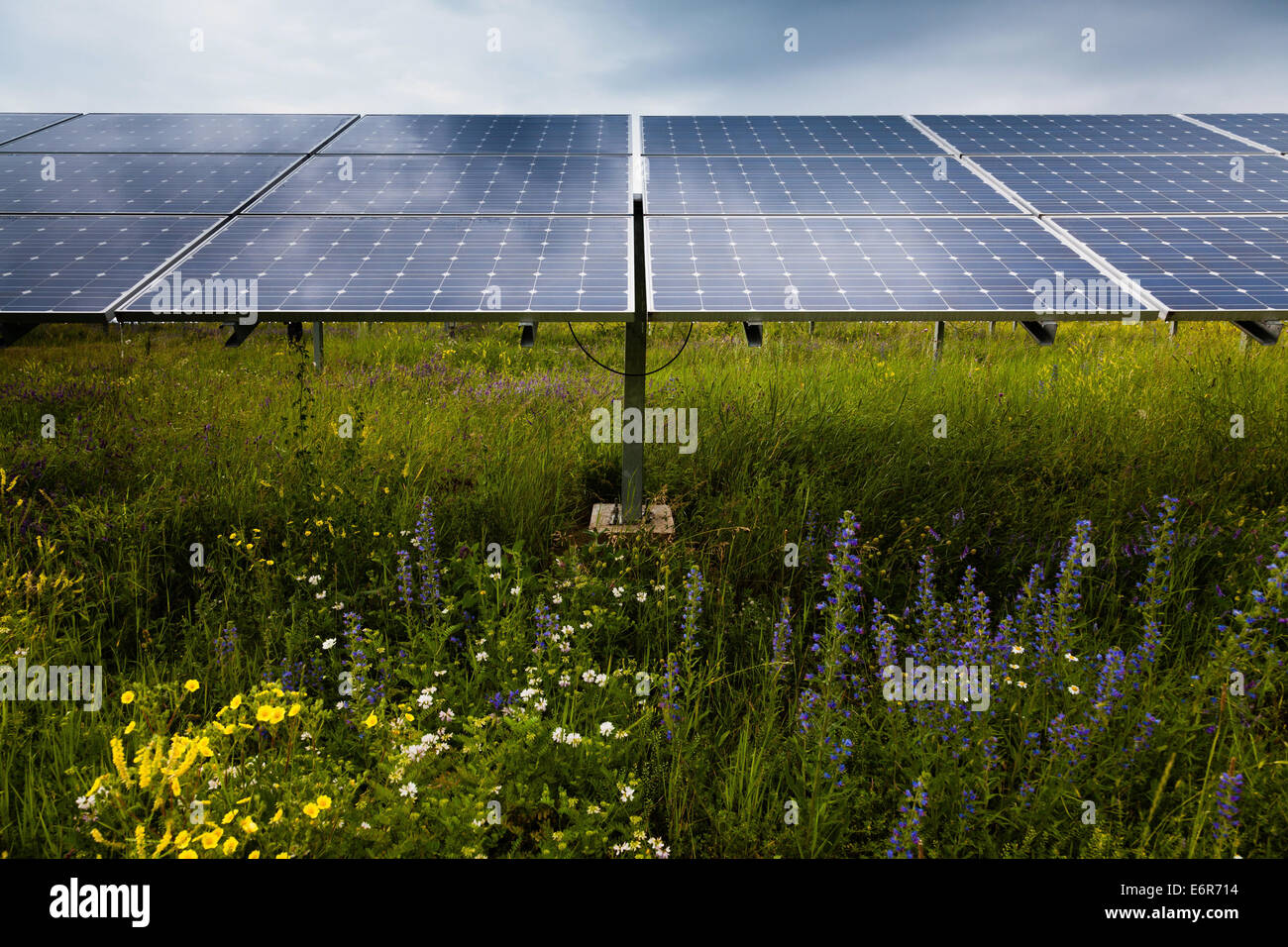Power plant using renewable solar energy - Stock Image