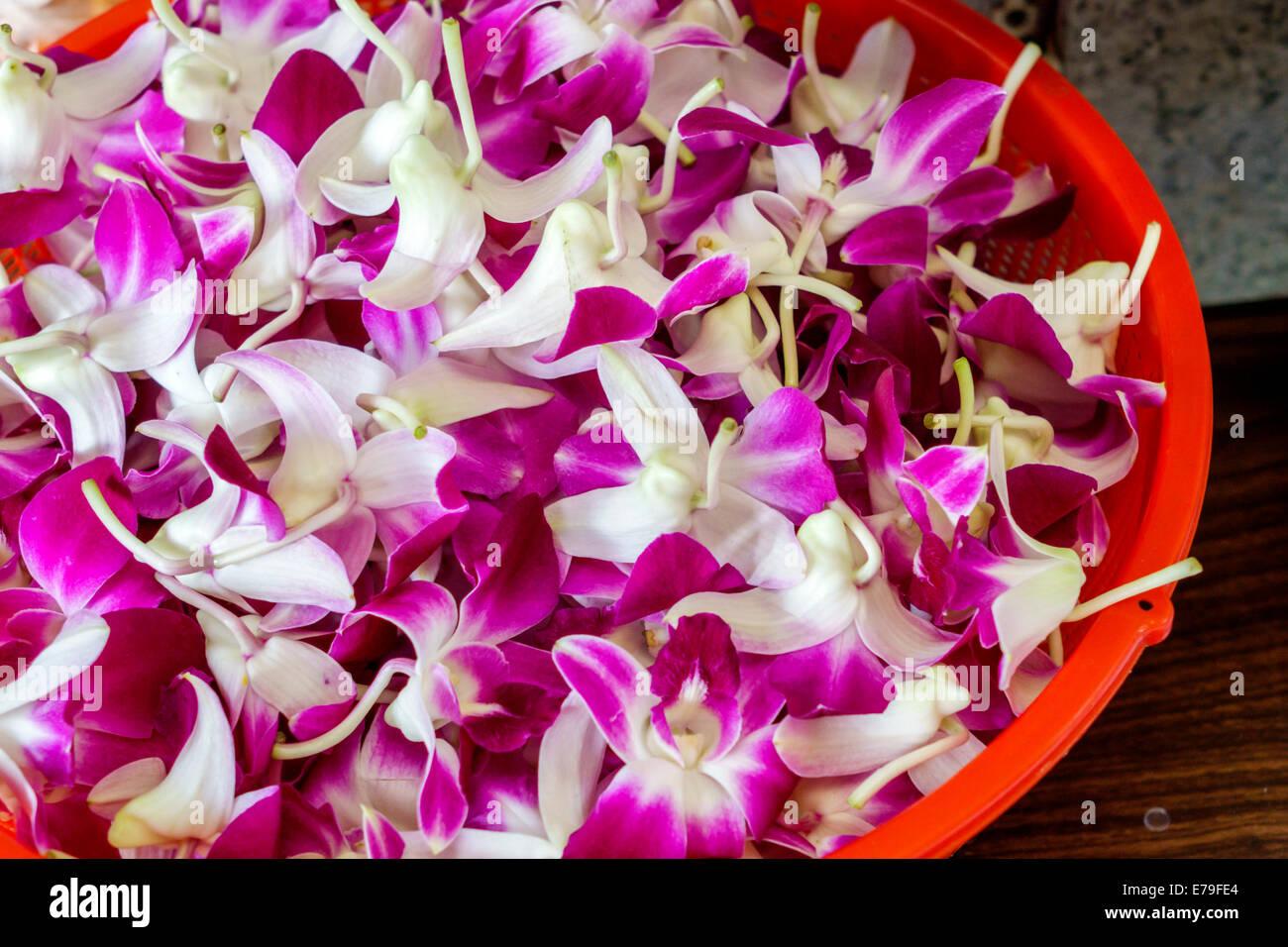 Honolulu hawaii hawaiian oahu chinatown kekaulike street florist honolulu hawaii hawaiian oahu chinatown kekaulike street florist shop orchid flowers leis sale izmirmasajfo