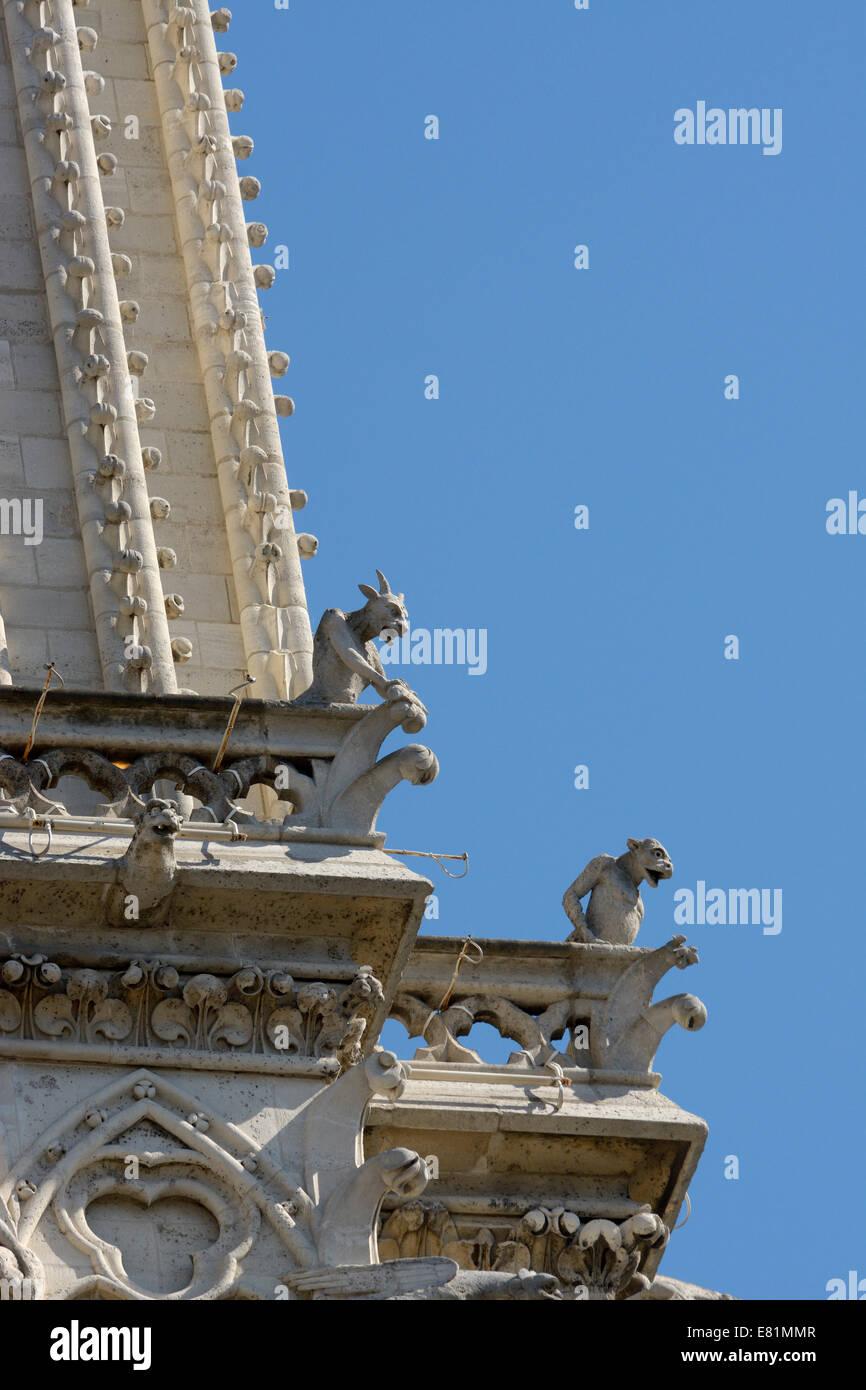 Mythical creatures, chimeras on the facade of Cathédrale Notre Dame, Paris, Île-de-France, France - Stock Image