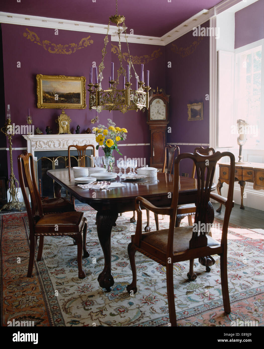 Metal light above antique mahogany chairs and table set for lunch in  traditional purple dining room with oriental carpet - Metal Light Above Antique Mahogany Chairs And Table Set For Lunch In