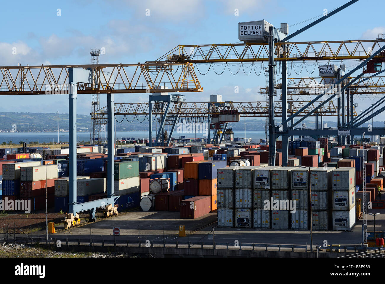 Gantry cranes and shipping containers at the Port of Belfast docks - Stock Image
