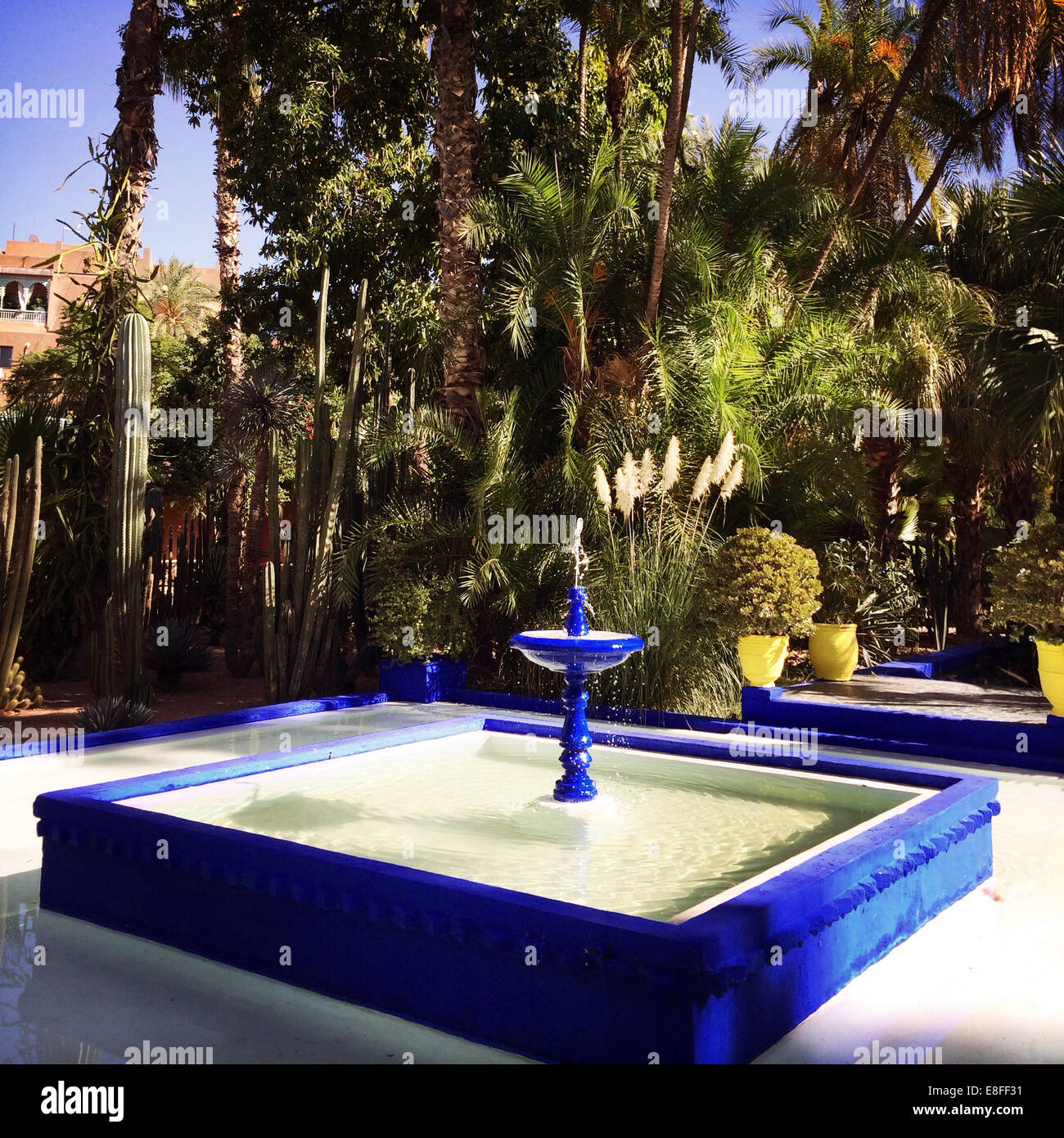 Morocco, Marrakesh, Bleu Fountain in Jardin Majorelle - Stock Image