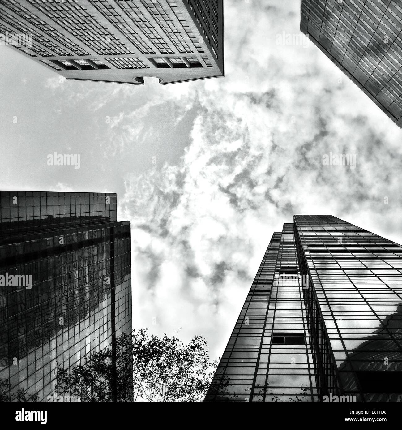 USA, New York State, New York City, Looking up at Skyscrapers of Madison and Fifth Avenues - Stock Image