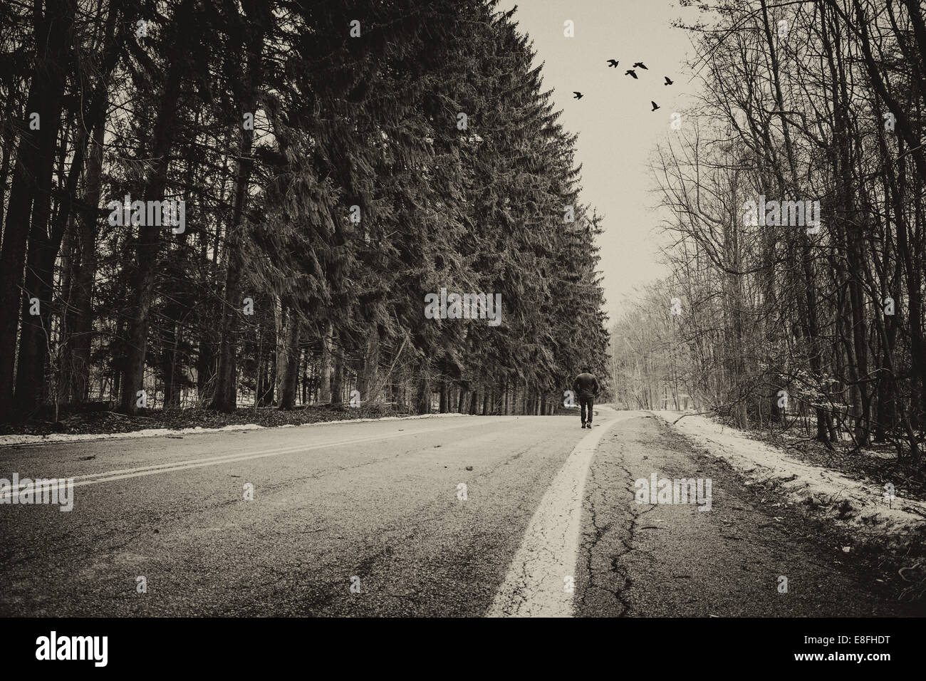 USA, Indiana, Man walking on road - Stock Image