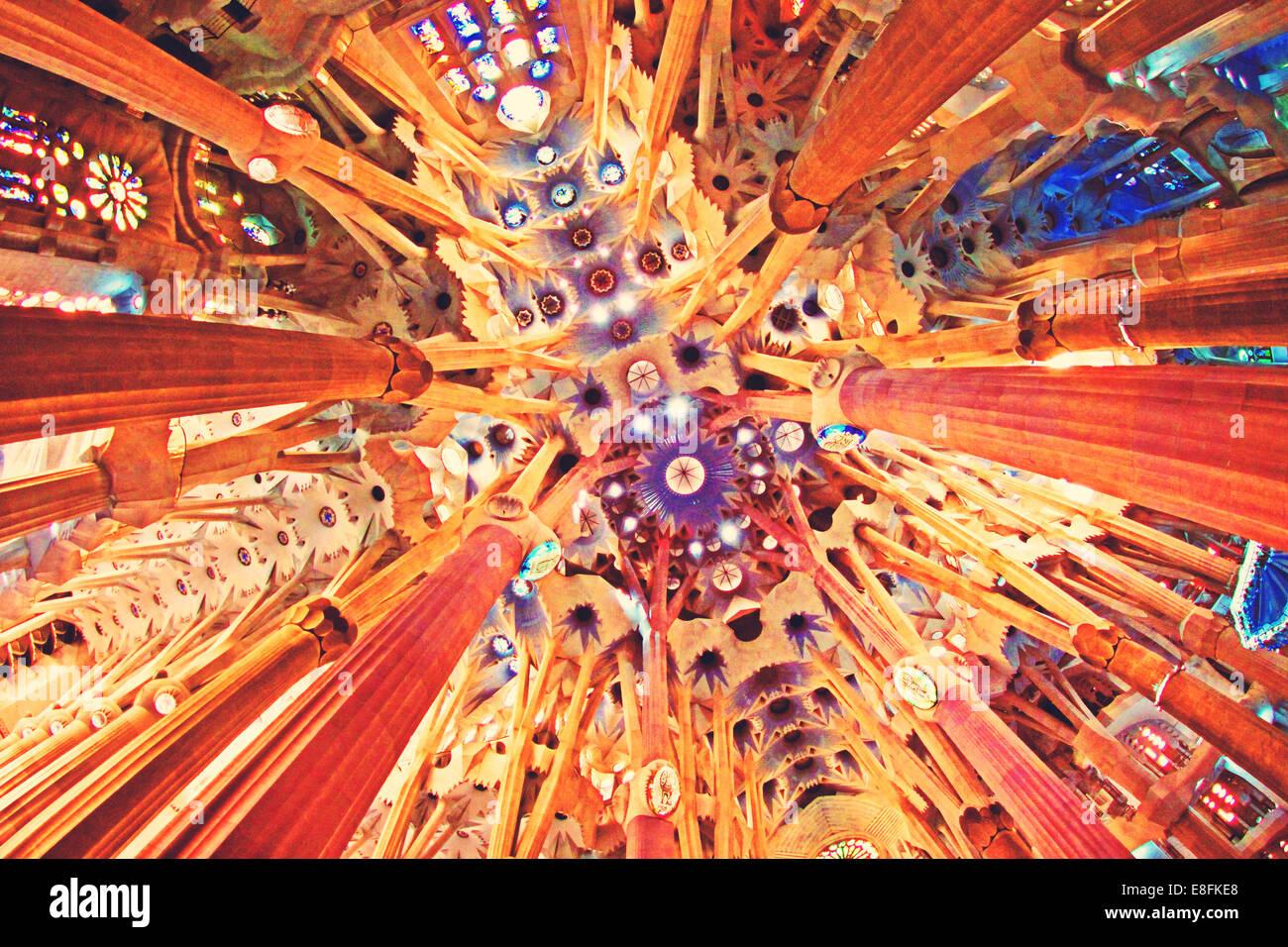 Spain, Barcelona, Sagrada Familia, Ceiling - Stock Image