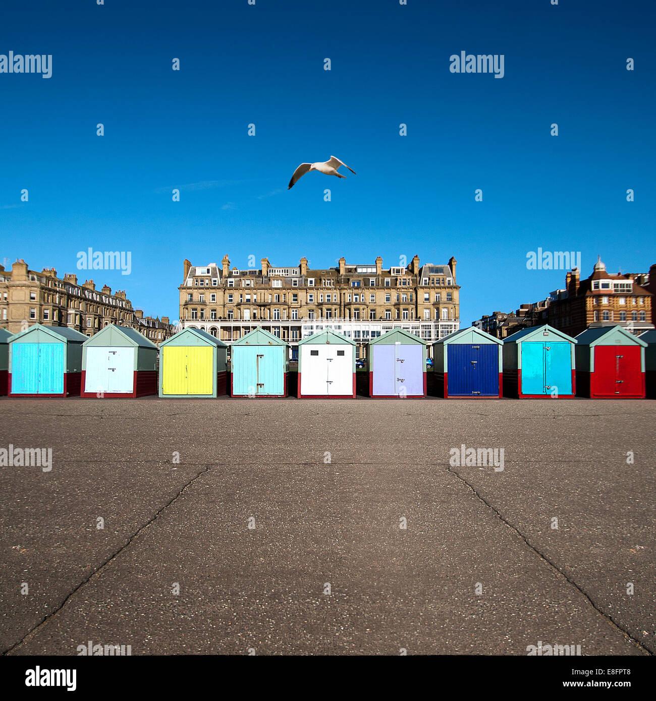 Multi-colored row of beach huts, Brighton, England, UK - Stock Image