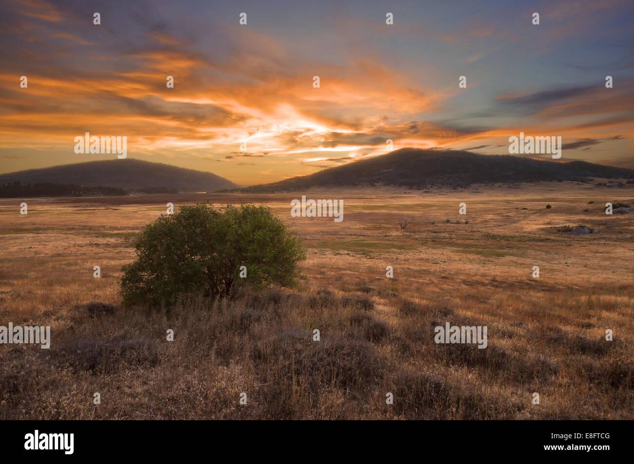 USA, California, Cuyamaca Rancho State Park at sunset - Stock Image