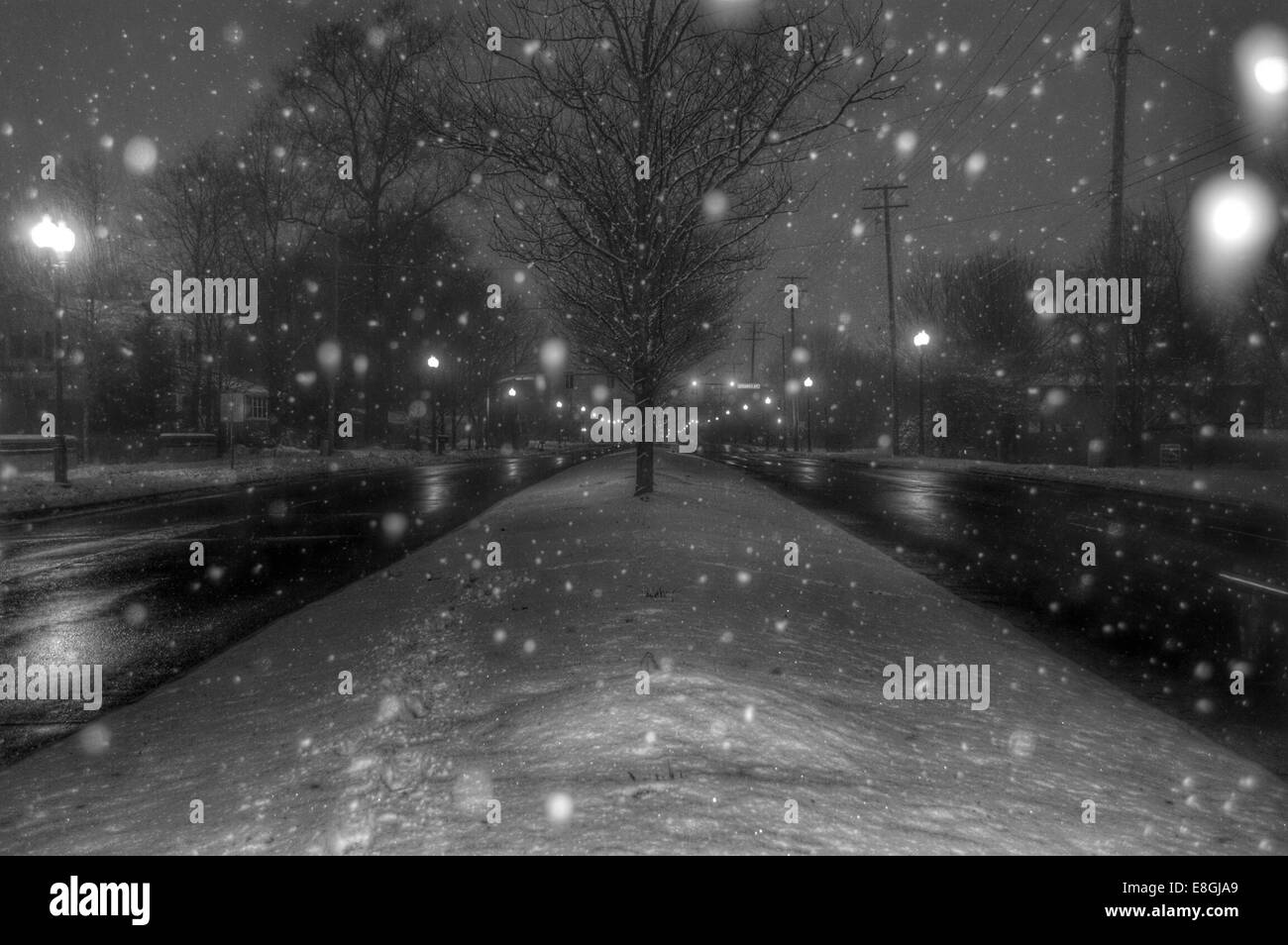 USA, Indiana, Hamilton County, Fishers, Winter Wonderland - Stock Image