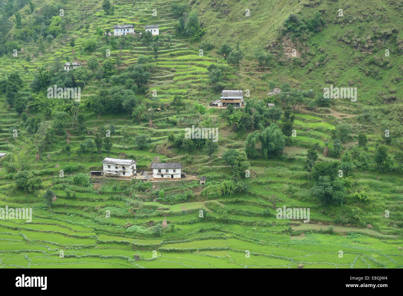 Scattered houses on hill - Stock Image