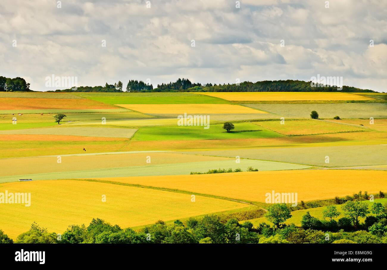 German countryside - Stock Image
