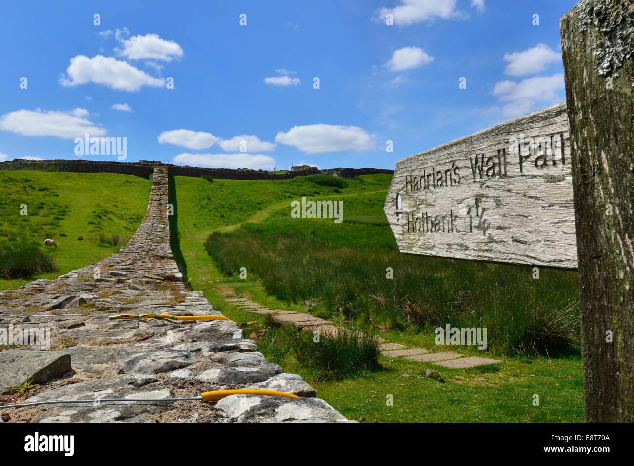Hadrian's Wall meandering through the landscape, Housesteads Roman Fort, Haydon Bridge, Hexham, Northumberland, Stock Photo
