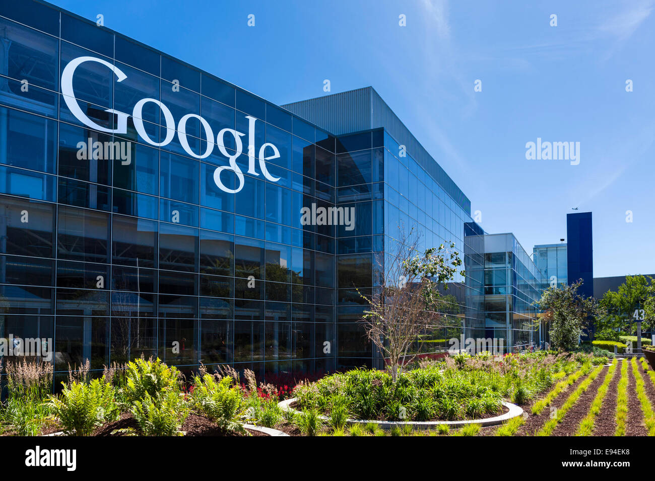 google head office pictures. google head office campus, mountain view, californias, usa pictures h