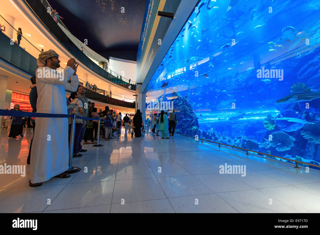 DUBAI, UAE - October 07,2014 : Aquarium in Dubai Mall - world's largest shopping mall , Downtown Burj Dubai - Stock Image