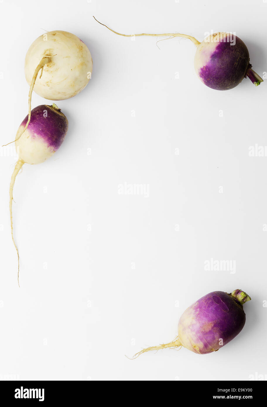Fresh turnip background with copy space (negative space) - Stock Image