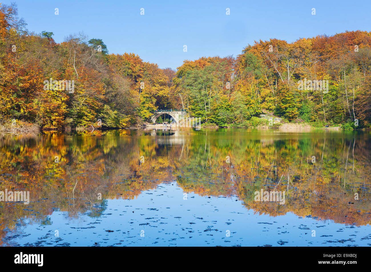 Colorful autumn landscape with reflection in a lake. - Stock Image