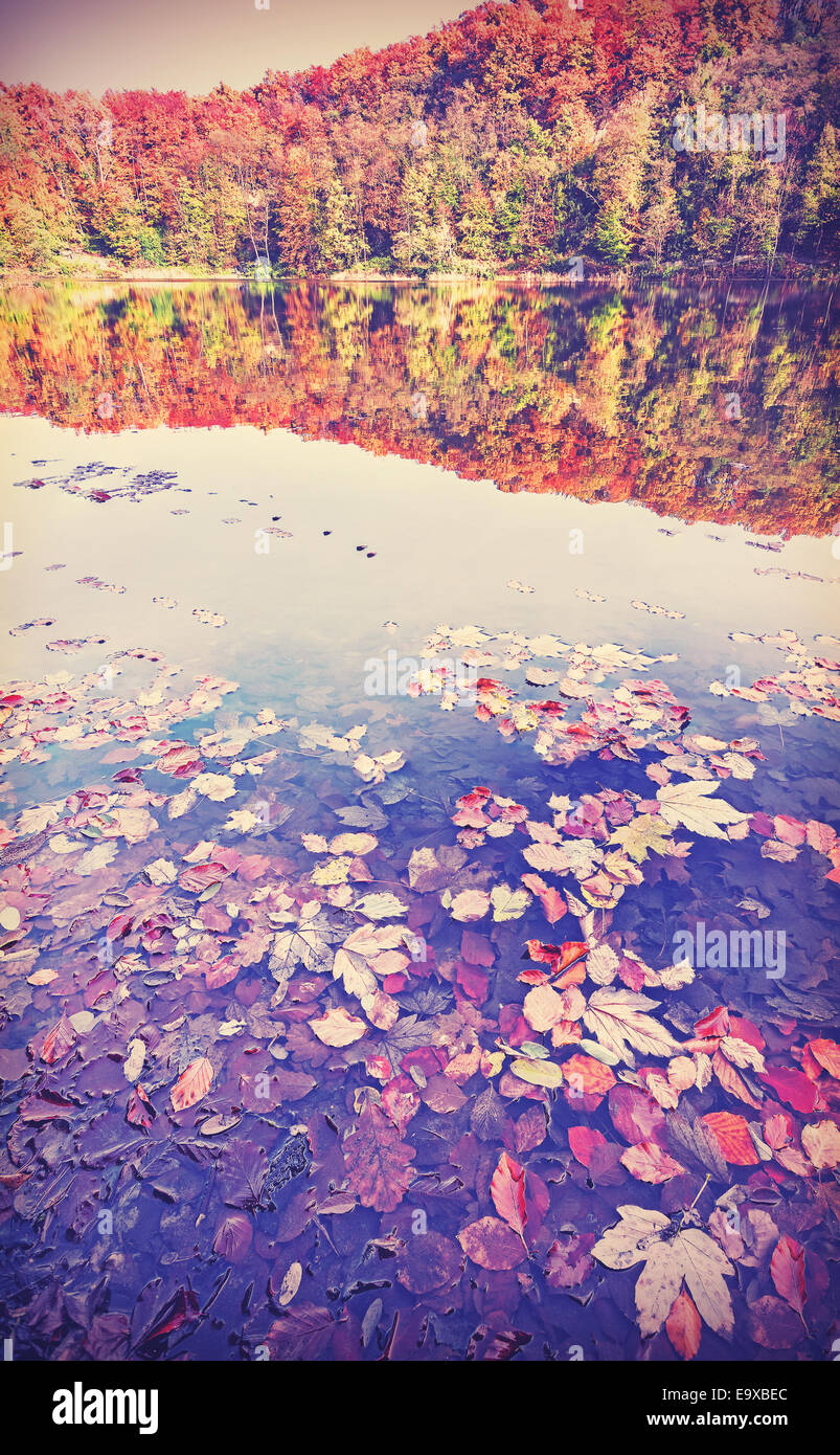 Vintage filtered autumn landscape with reflection in a lake. - Stock Image