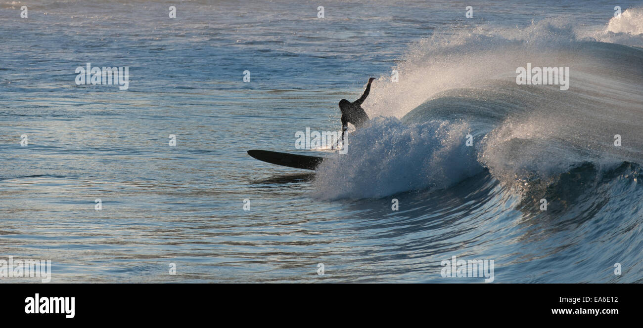 Australia, New South Wales, Sydney, Surfer in afternoon - Stock Image