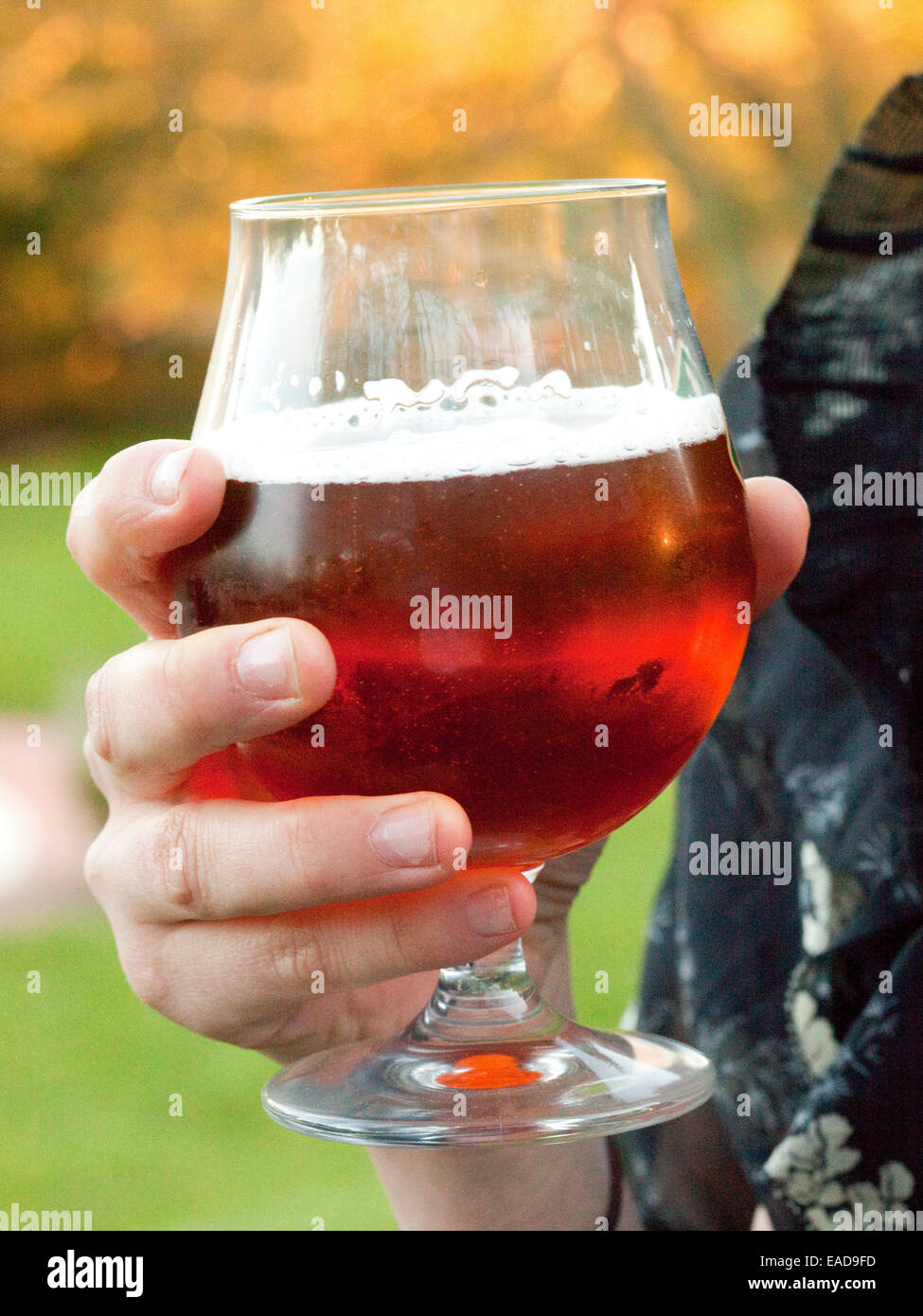 holding a glass of beer during out door cocktail reception - Stock Image