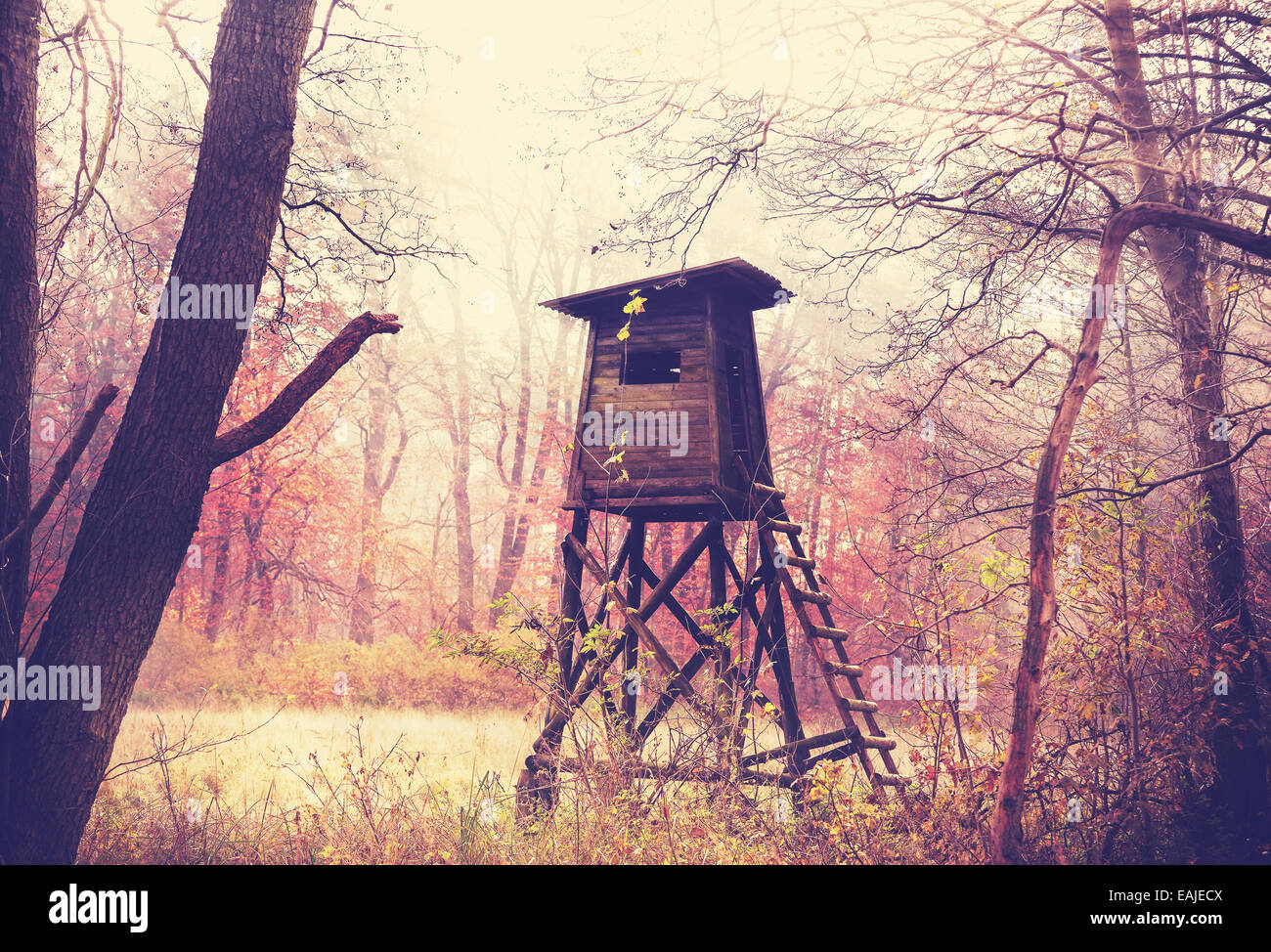 Vintage filtered photo of hunting pulpit in forest. - Stock Image