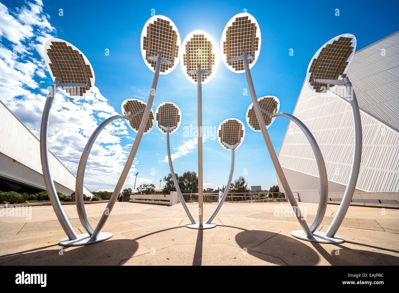 Solar powered led lights as street lighting aka The Solar Mallee Trees sculpture. Adelaide South Australia Stock Photo