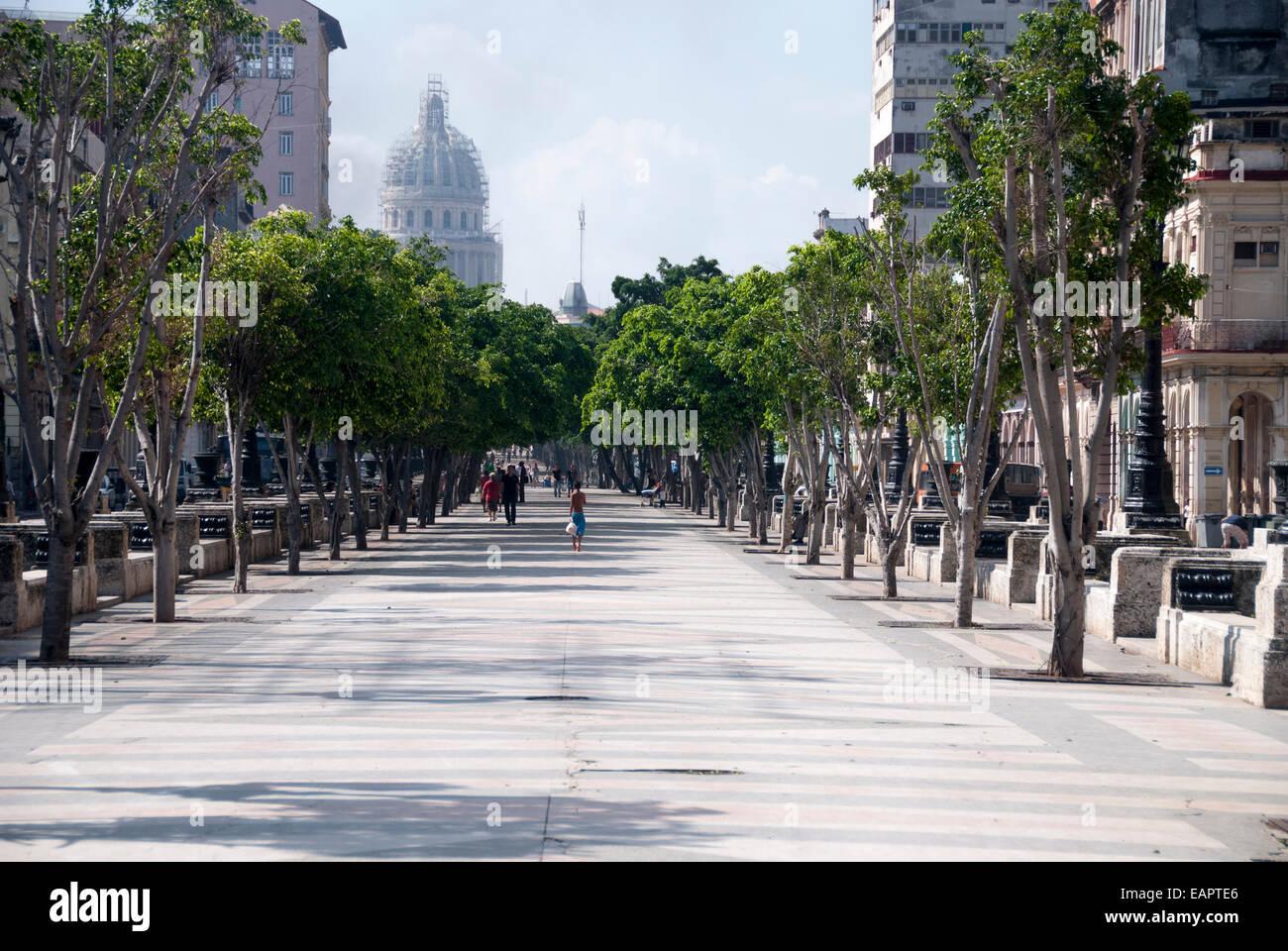 paseo-del-prado-is-a-pedestrian-promenade-that-divides-the-center-EAPTE6.jpg