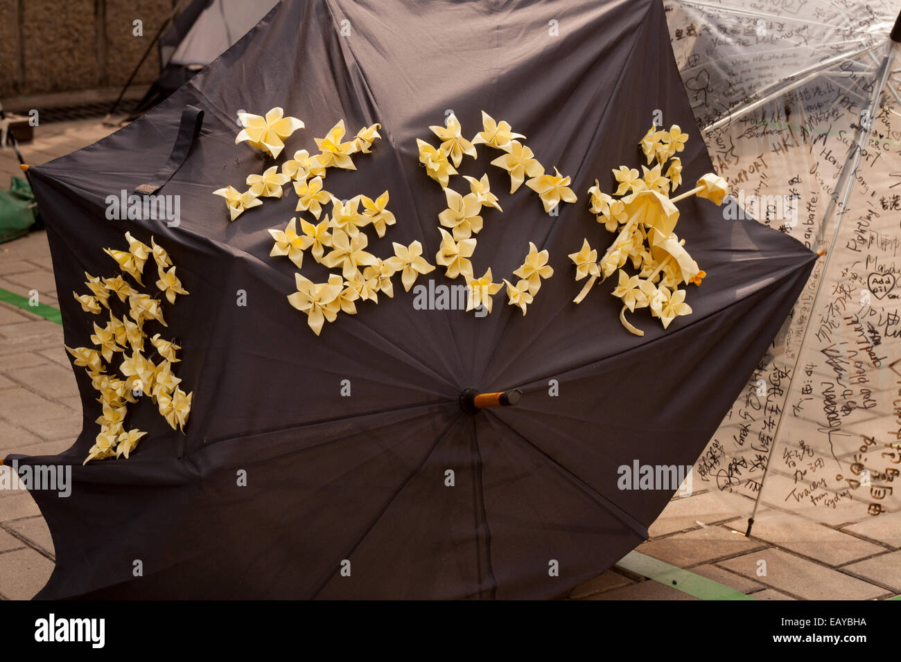 Black Umbrella Decorated With Yellow Paper Flowers And Umbrellas In