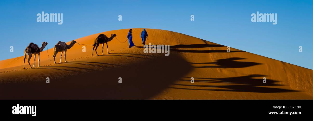 CARAVAN SAHARA DESERT ERG CHEBBI MERZOUGA MOROCCO - Stock Image