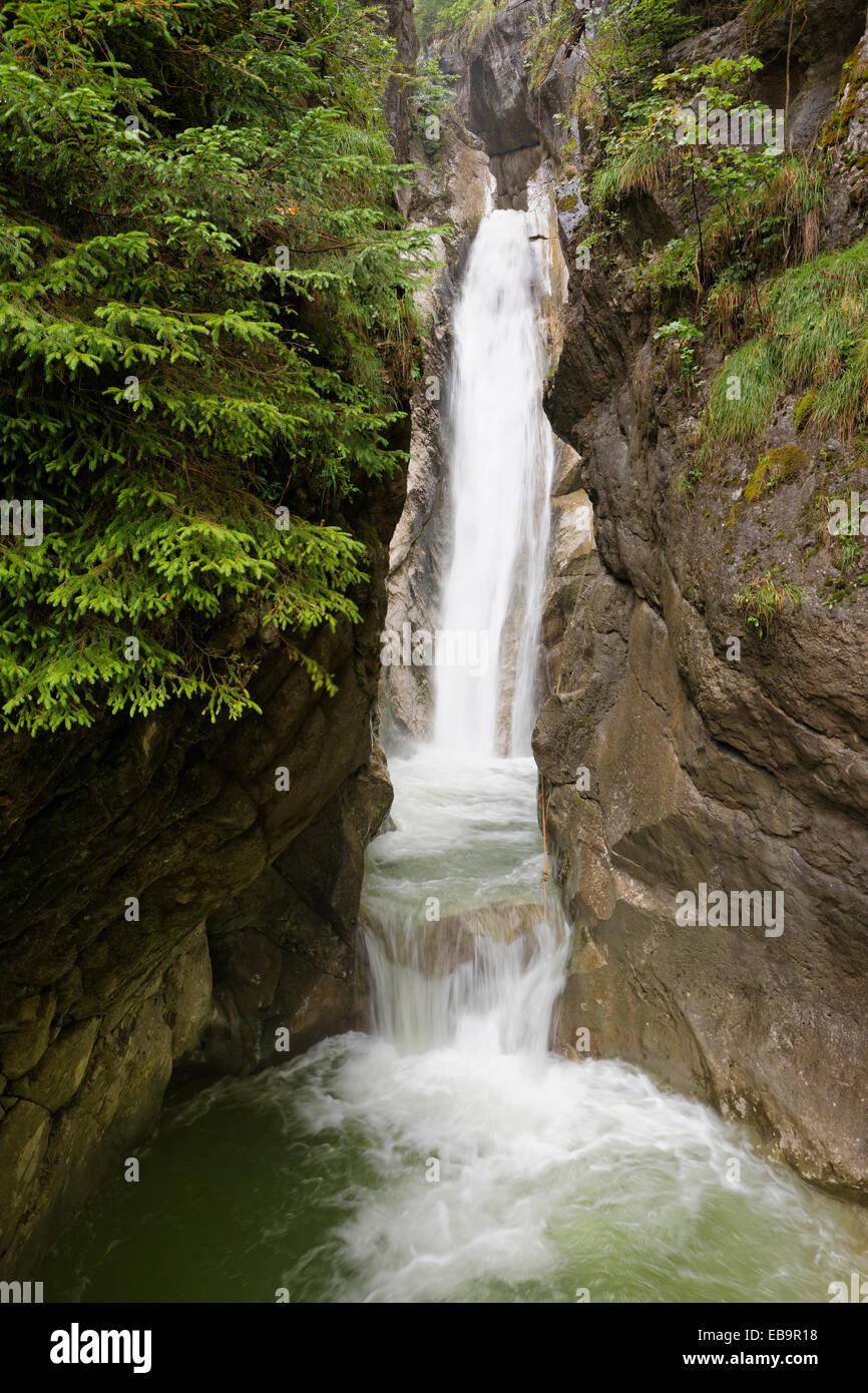 Tatzelwurm Waterfall, lower level, Oberaudorf, Mangfall Mountains, Upper Bavaria, Bavaria, Germany - Stock Image