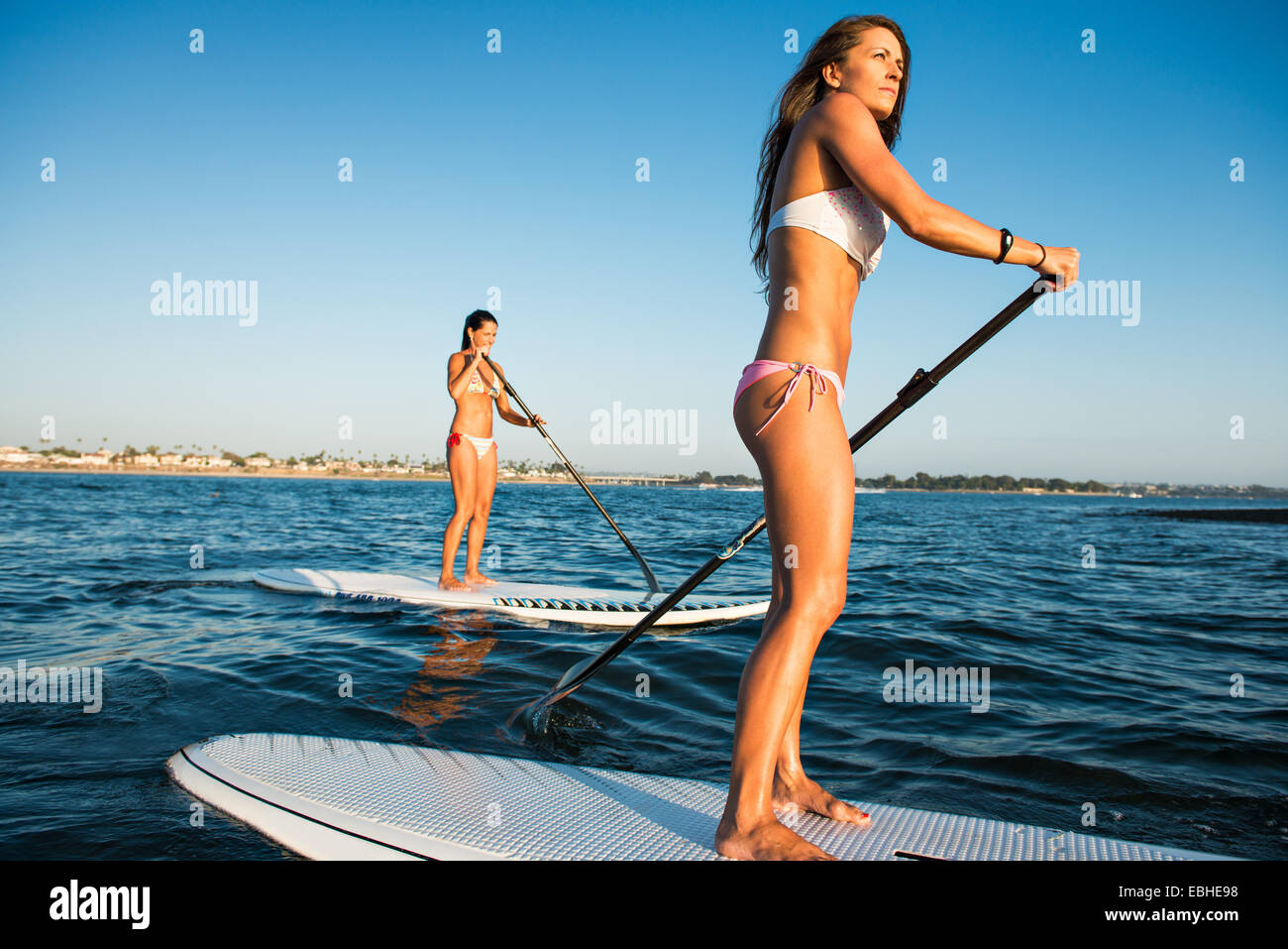 Two women stand up paddleboarding, Mission Bay, San Diego, California, USA - Stock Image