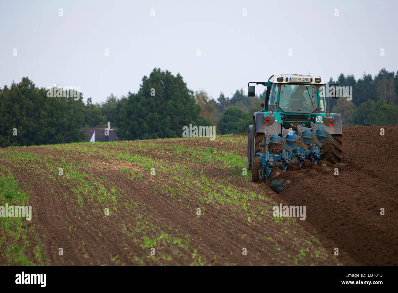 tractor plowing an acre, Germany, Schleswig-Holstein - Stock Image