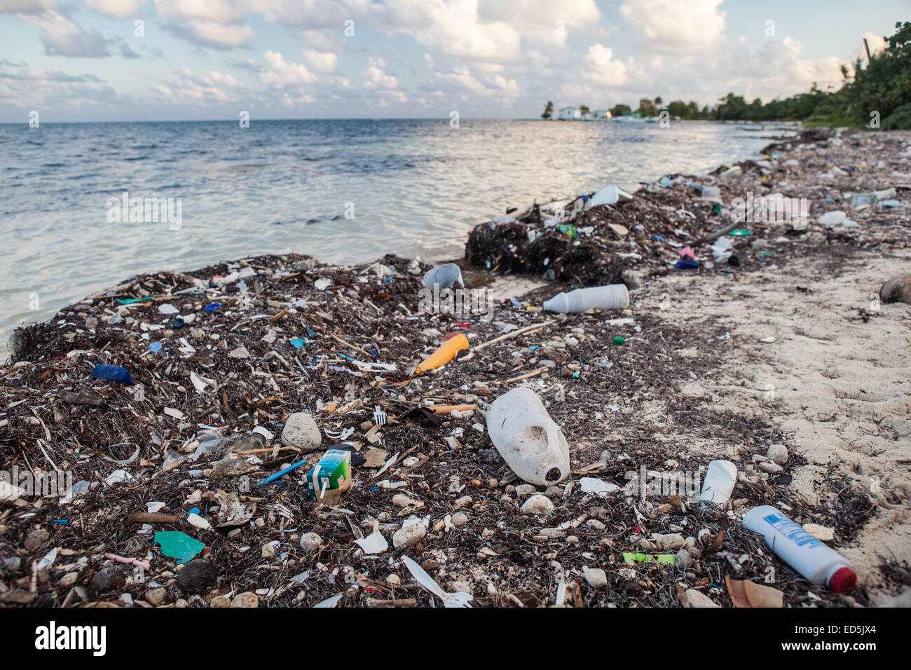 Plastic garbage has washed up on a remote island in the Caribbean Sea. Plastic is an ever-growing environmental Stock Photo