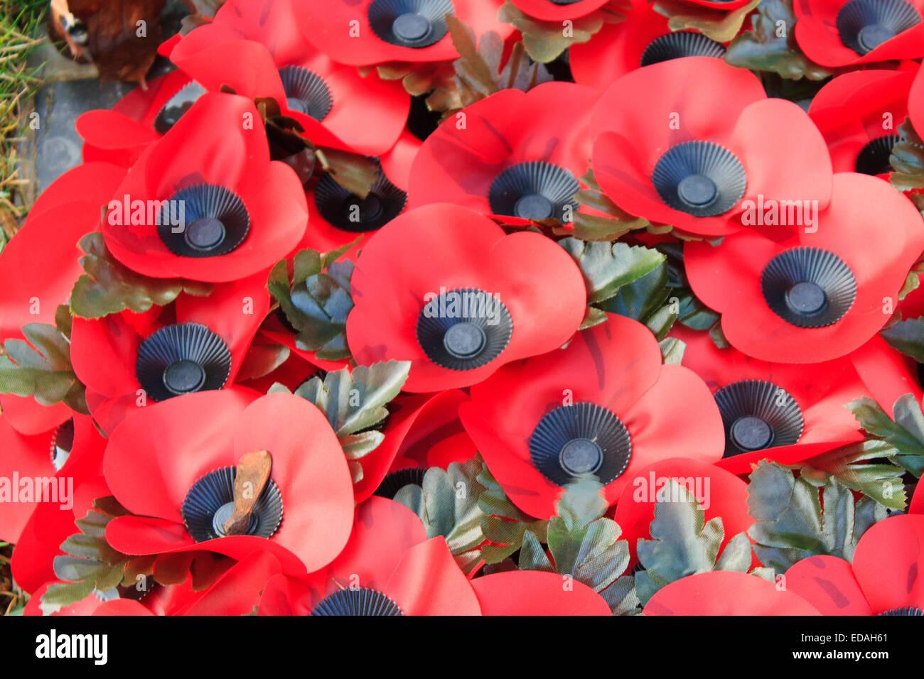 Poppy Remembrance Anzac Day World War 1 Stock Photo 77065017 Alamy