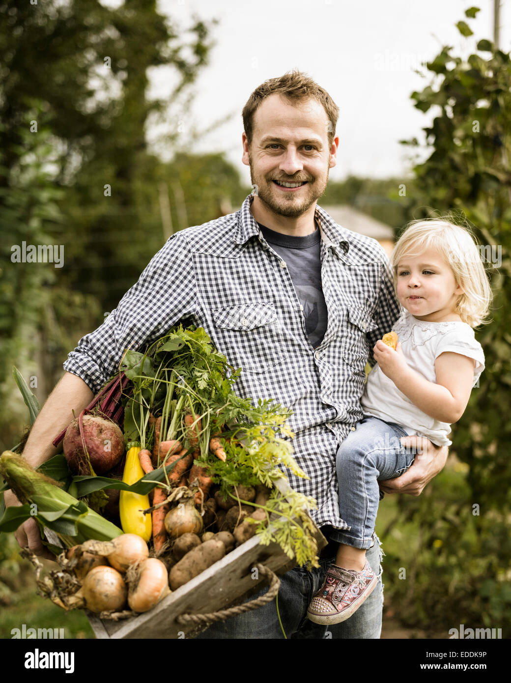 Man standing in his allotment with his daughter, smiling, holding a box full of freshly picked vegetables. - Stock Image