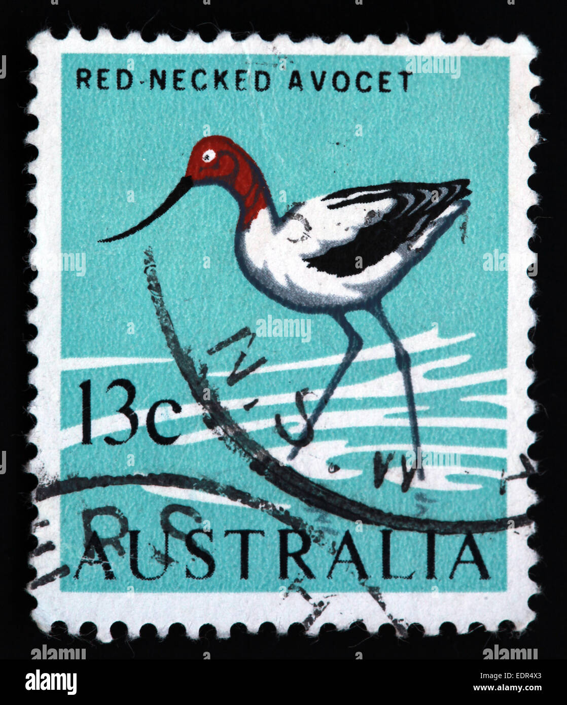 amimal,stamps,Australia,illustration,Used and Postmarked,Used,and,postmarked,perforated,Australia,stamp,Used,and,postmarked,Australia,Austrailian,Stamp,post,posting,mail,hobby,perforation,mark,postage,stamp,print,stamp,cancelled,stamp,payment,correspondence,postman,collection,col,Gotonysmith,post,posting,mail,hobby,perforation,mark,postage,stamp,print,stamp,cancelled,canceled,stamp,payment,correspondence,postman,collection,collector,philately,philatelist,letter,price,history,retro,Australian,Vintage,delivery,date,relationship,communication,Oz,Australia,DownUnder,classic rare unique Austrailian financial,investment,invest,value,British,empire,nation,canceled,printed on black background,close-up,closeup,close,up,sent,send,philately,mailing,shipping,postoffice,office,isolated,circa,special,colour,color,postmarked,marked,airmail,aged,antique,retro,cutting,historic,old,stamps,collection,stamp collection,album,Timbre,Sello,Stempel,Selo,Down Under,Black background
