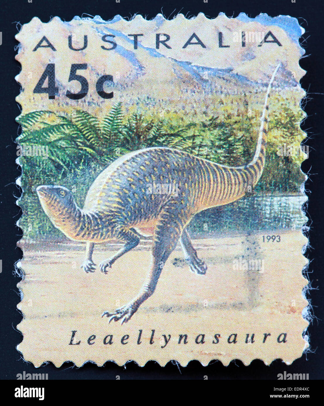 Dinosaurs,Dinosaur,animal,Leaellynasauras,Fossil,Leaellyns,lizard,small,herbivorous,ornithischian,cove,palaeontologist,Museum of Victoria,National Geographic Society,Used and Postmarked,Used,and,postmarked,perforated,Australia,stamp,Used,and,postmarked,Australia,Austrailian,Stamp,post,posting,ma,Gotonysmith,running,run,runs,Jurassic,walk,walking,walks,mark,postage,stamp,print,stamp,cancelled,canceled,stamp,payment,correspondence,postman,collection,collector,philately,philatelist,letter,price,history,retro,Australian,Vintage,delivery,date,relationship,communication,Oz,Australia,DownUnder,classic rare unique Austrailian financial,investment,invest,value,British,empire,nation,canceled,printed on black background,close-up,closeup,close,up,sent,send,philately,mailing,shipping,postoffice,office,isolated,circa,special,colour,color,postmarked,marked,airmail,aged,antique,retro,cutting,historic,old,stamps,collection,stamp collection,album,Timbre,Sello,Stempel,Selo,Down Under,Black background